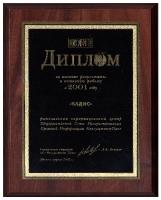 Диплом результаты работы 2001 г.